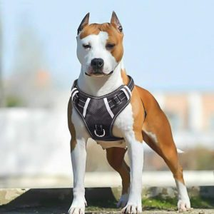 BABYLTRL Big Dog Harness No Pull