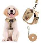 Soft Mesh Dog Harness Pet Puppy