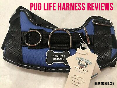 pug life harness reviews