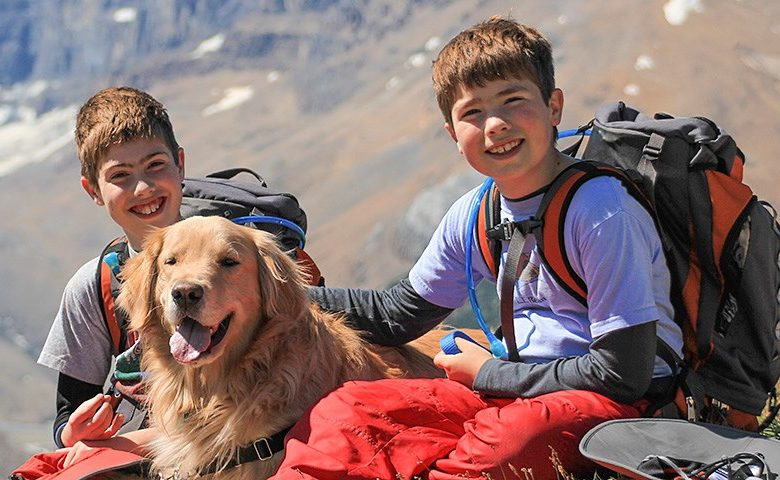 Best Dog Hiking Backpack Carrier
