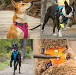 Ruffwear Harness Review