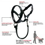 gentle leader dog harness