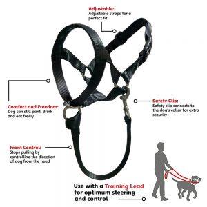 gentle leader dog harness